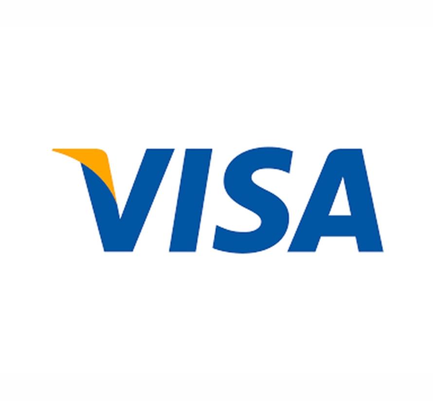 1. Visa Logo 1